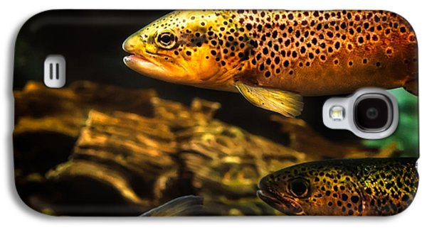 Trout Swiming In A River Galaxy S4 Case