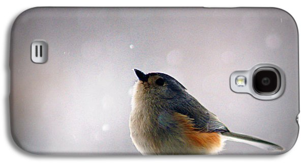 Tufted Titmouse Galaxy S4 Case by Cricket Hackmann