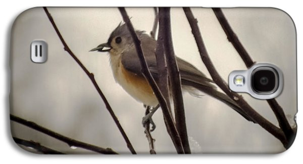 Tufted Titmouse Galaxy S4 Case