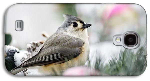 Tufted Titmouse Portrait Galaxy S4 Case by Christina Rollo