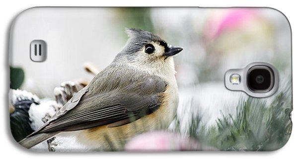 Tufted Titmouse Portrait Galaxy S4 Case