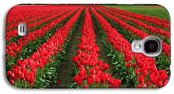 Tulip Cornucopia Galaxy S4 Case by Inge Johnsson