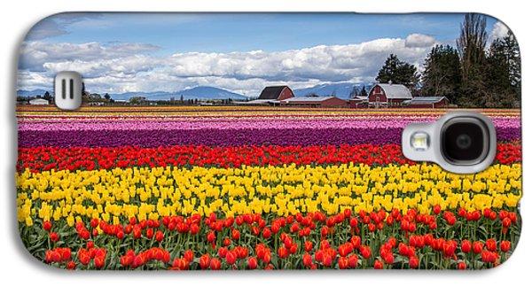 Tulip Farm Galaxy S4 Case by Pierre Leclerc Photography