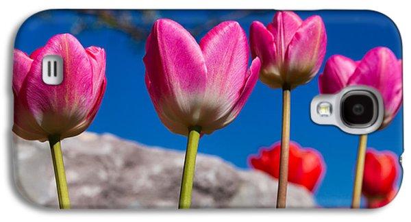 Tulip Galaxy S4 Case - Tulip Revival by Chad Dutson