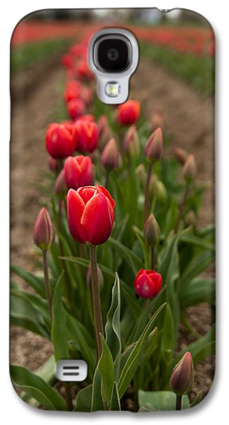 Tulip Row Galaxy S4 Case by Erin Kohlenberg