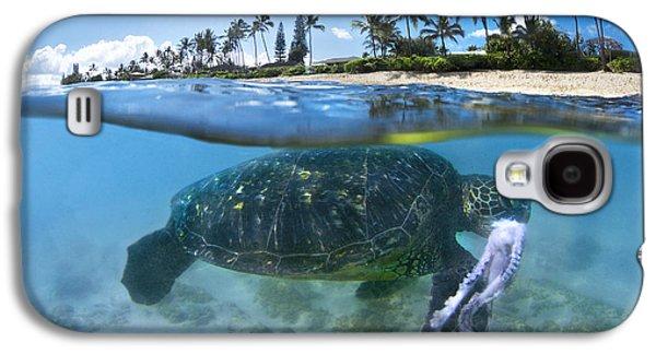 Turtle Snack Galaxy S4 Case by Sean Davey