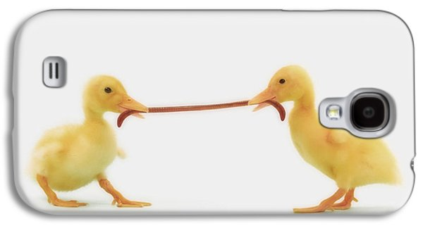 Two Baby Ducklings Fighting Galaxy S4 Case by Thomas Kitchin & Victoria Hurst