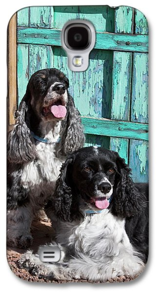 Two Cocker Spaniels In Front Of An Old Galaxy S4 Case by Zandria Muench Beraldo
