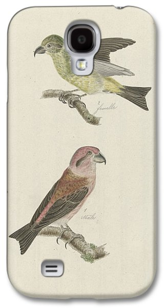 Two Crossbills, Possibly Christiaan Sepp Galaxy S4 Case