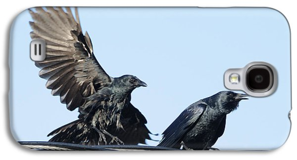 Two Crows On A Wire Galaxy S4 Case