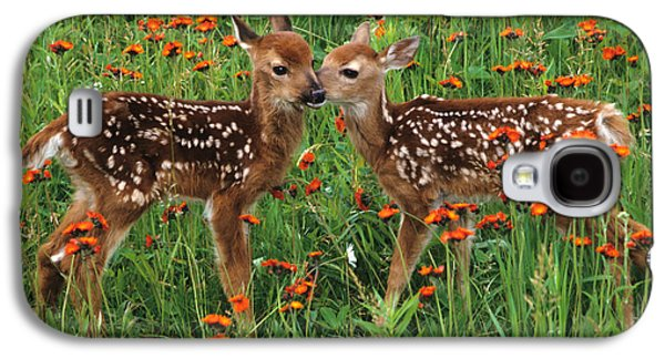 Two Fawns Talking Galaxy S4 Case