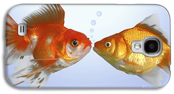 Two Fish Kissing Fs502 Galaxy S4 Case by Greg Cuddiford