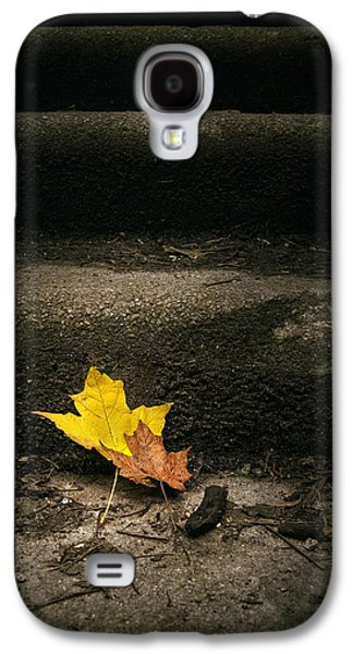 Two Leaves On A Staircase Galaxy S4 Case by Scott Norris