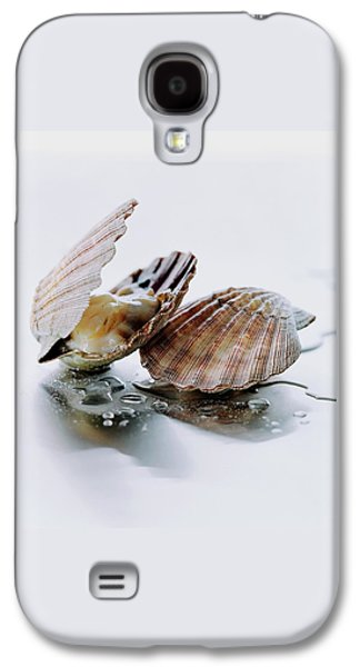 Two Scallops Galaxy S4 Case by Romulo Yanes