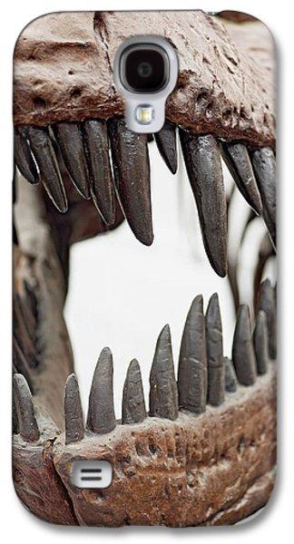 Tyrannosaurus Skull Showing Teeth Galaxy S4 Case