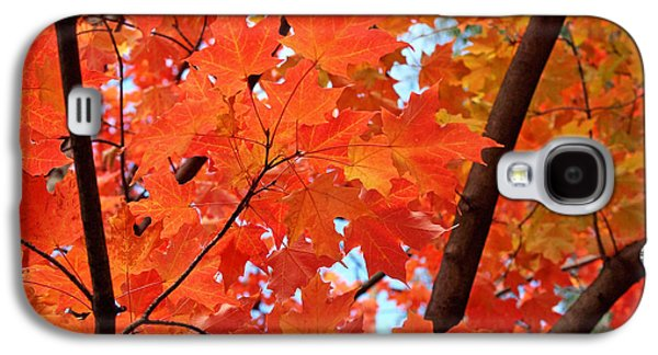 Under The Orange Maple Tree Galaxy S4 Case