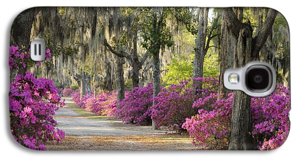 Unpaved Road With Azaleas And Oaks Galaxy S4 Case