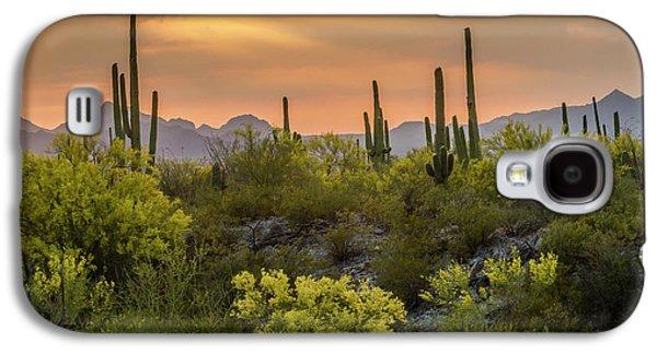 Desert Sunset Galaxy S4 Case - Usa, Arizona, Saguaro National Park by Jaynes Gallery
