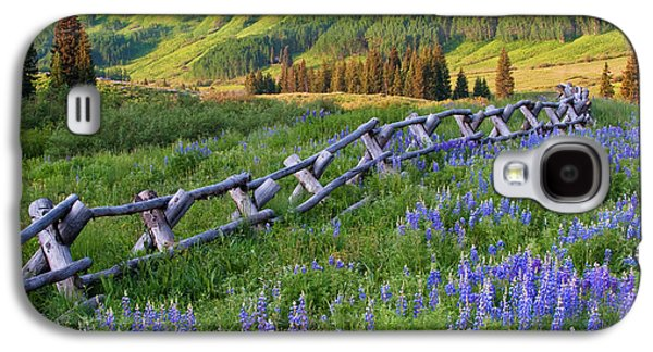 Usa, Colorado Lupines And Split Rail Galaxy S4 Case by Jaynes Gallery