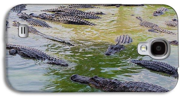 Usa, Florida, Ochopee Galaxy S4 Case by Charles Crust