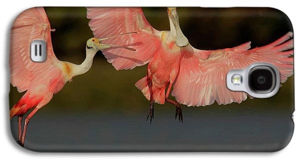 Usa, Florida, Tampa Bay, Alafaya Banks Galaxy S4 Case by Jaynes Gallery