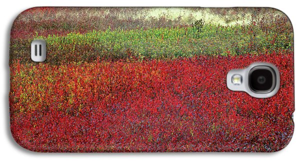 Usa, Maine Blueberry Fields In Autumn Galaxy S4 Case by Jaynes Gallery