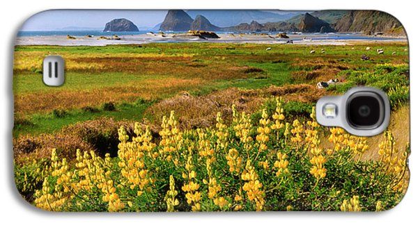 Usa, Oregon Landscape Of Yellow Lupine Galaxy S4 Case by Jaynes Gallery