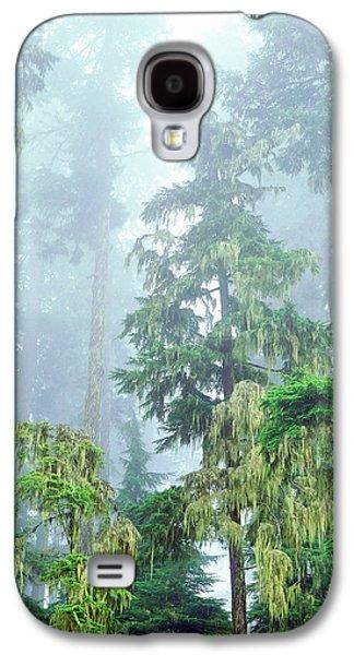 Usa, Oregon, Old-growth Douglas Fir Galaxy S4 Case