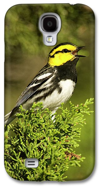 Warbler Galaxy S4 Case - Usa, Texas, Hill Country, Mike Murphy by Jaynes Gallery
