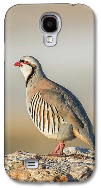 Usa, Utah, Antelope Island State Park Galaxy S4 Case