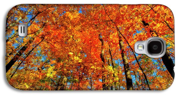 Usa, West Lafayette, Indiana, Trees Galaxy S4 Case by Rona Schwarz
