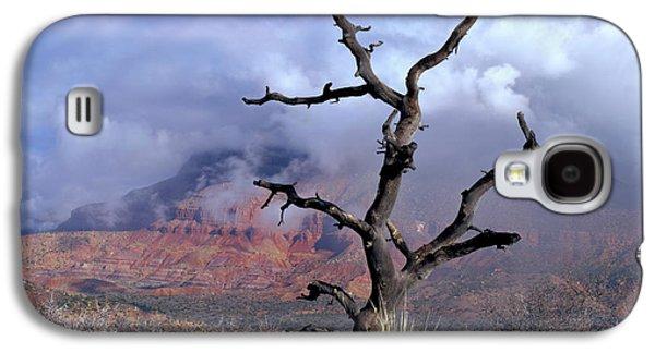 Utah Usa Pinyon Pine Snag Above Virgin Galaxy S4 Case by Scott T. Smith