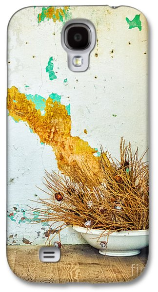 Vase On Wooden Floor Galaxy S4 Case by Silvia Ganora