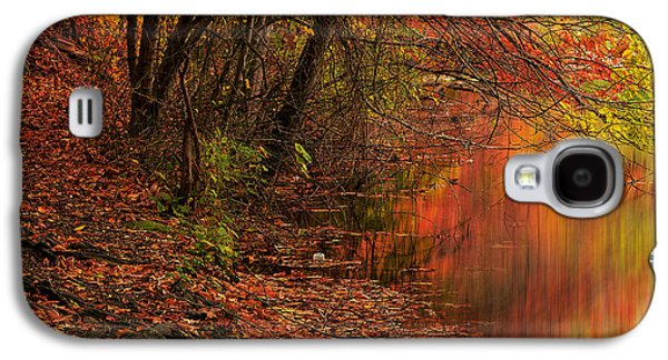 Vibrant Reflection Galaxy S4 Case by Lourry Legarde
