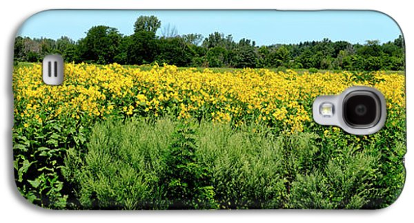 View Of A Field, Abshire Prairie Galaxy S4 Case by Panoramic Images