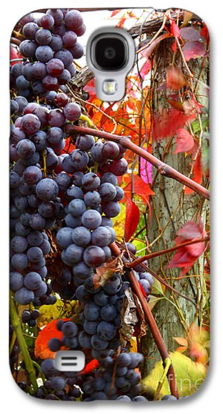 Vines Of October Galaxy S4 Case by Roger Bailey