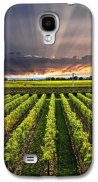 Vineyard At Sunset Galaxy S4 Case
