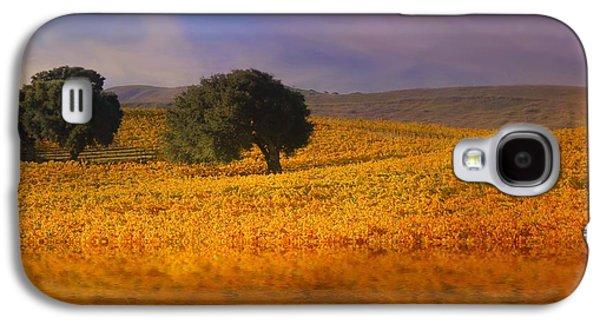 Vineyard Magic Galaxy S4 Case by Stephanie Laird