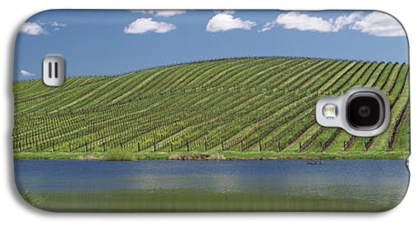 Vineyard Near A Lake, Napa County Galaxy S4 Case by Panoramic Images