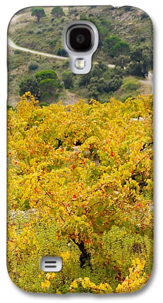 Vineyards, Collioure, Vermillion Coast Galaxy S4 Case