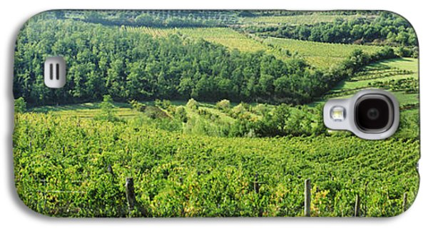 Vineyards In Chianti Region, Tuscany Galaxy S4 Case by Panoramic Images