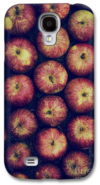 Vintage Apples Galaxy S4 Case by Tim Gainey