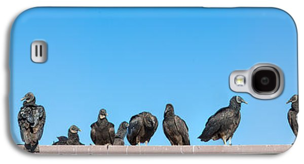 Vultures On Anhinga Trail, Everglades Galaxy S4 Case