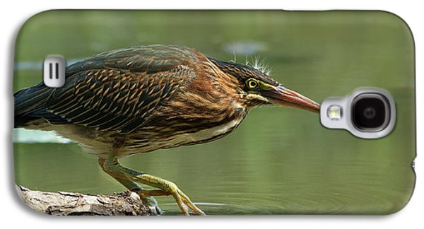 Heron Galaxy S4 Case - Wading Into The Unknown by Darlene Hewson