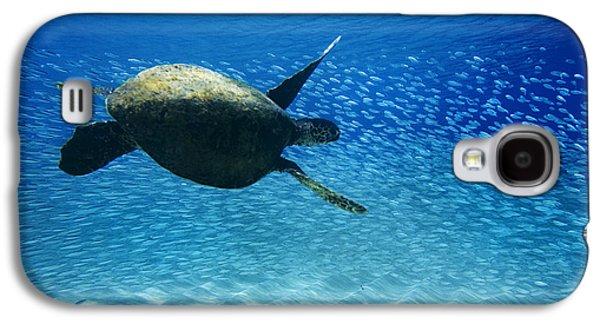Waimea Turtle Galaxy S4 Case by Sean Davey