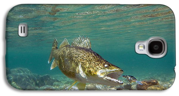 Walleye And Rapala Lure Galaxy S4 Case by Paul Buggia
