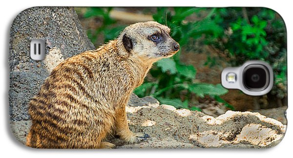 Watchful Meerkat Galaxy S4 Case by Jon Woodhams