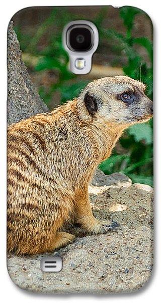 Watchful Meerkat Vertical Galaxy S4 Case by Jon Woodhams