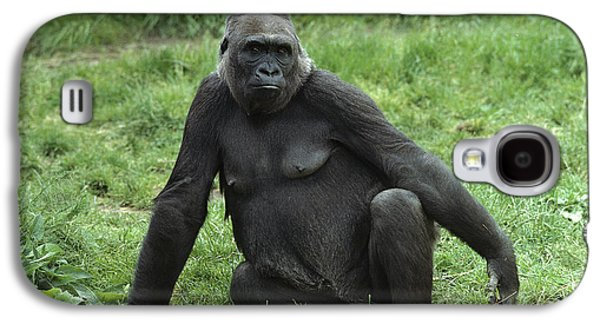 Western Lowland Gorilla Female Galaxy S4 Case by Gerry Ellis