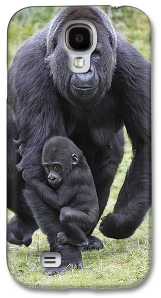 Western Lowland Gorilla Walking Galaxy S4 Case by Duncan Usher